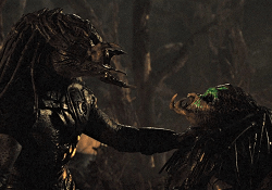 A Predator fighting another Predator