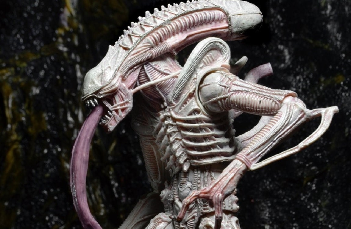 The Albino Drone Xenomorph from NECA