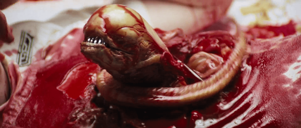 Chestburster, a common Xenomorph type