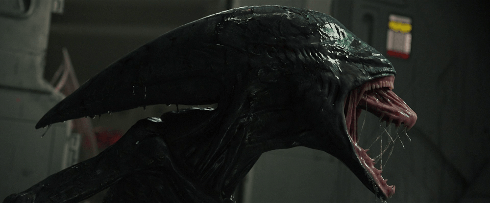 Deacon, a Xenomorph type born from Engineers