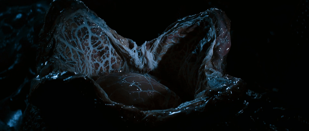 Alien Egg, a Xenomorph type
