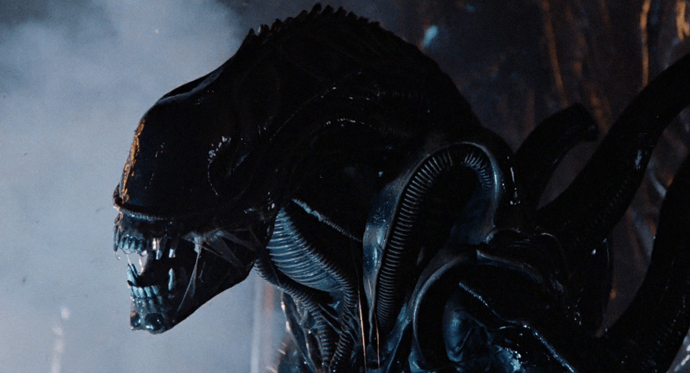 Warrior Alien, one of the most common Xenomorph types